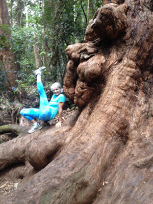Kim Stansfield Yoga on a tree